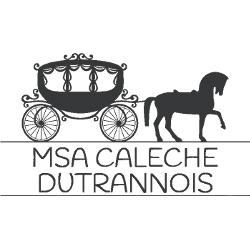 MSA-caleche